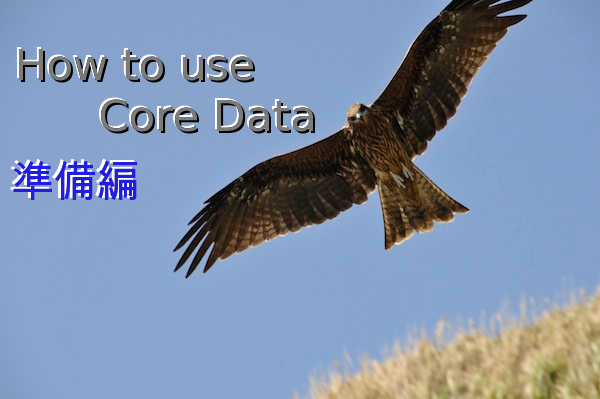How to use CoreData