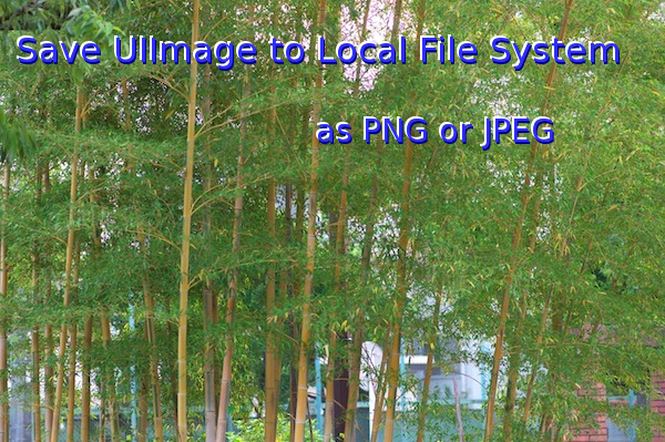 Save UIImage to Local File System