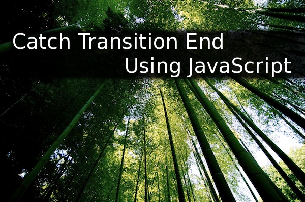 Cache Transition End Using JavaScript